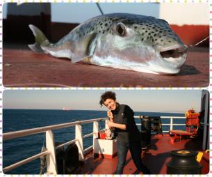 fishingonaship